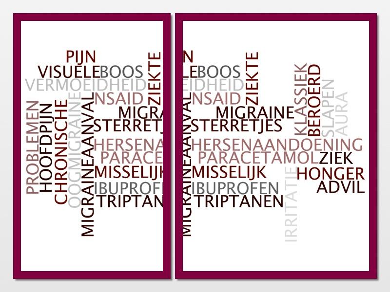 Migraine in woorden